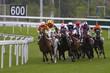 Horse Racing - 4768091