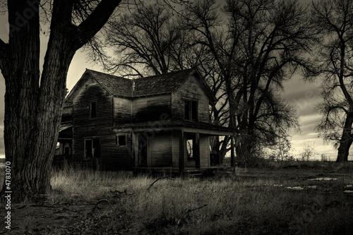 haunted house monochrome
