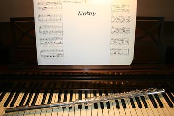 "PIano ""Notes"""