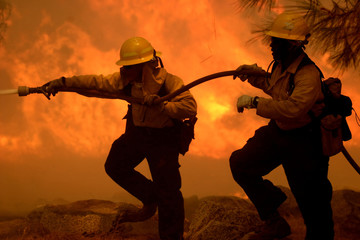 Forestry Firefighters