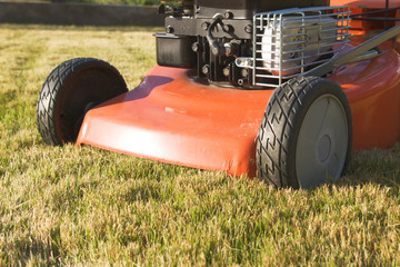 motorized lawnmower