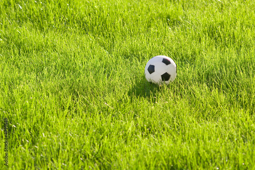toy football on green grass