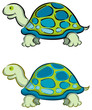 2 cartoon tortoise