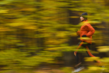 autumn running in the forest