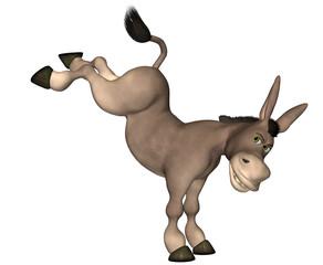 Donkey Cartoon . 9