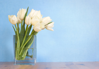 vase of white tulips on table; blue background