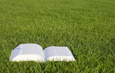 Open book on green grass 2