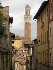Siena vista torre del Mangia dai vicoli del palio
