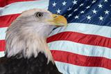 Patriotic Bald Eagle poster