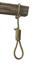 Gallows with rope noose close-up