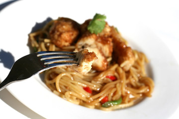 Pasta Noodles with Chicken