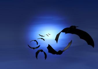 bats flies on moonlight night