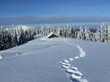 winter house - Fine Art prints