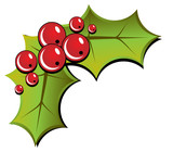 Christmas holly illustration