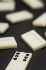 domino game