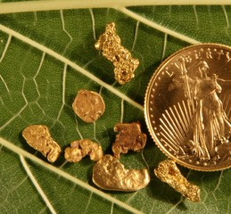 gold,coin,nuggets