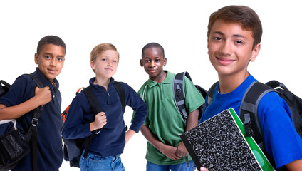 Diversity in Education