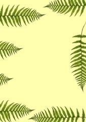 Seven Fern Leaves