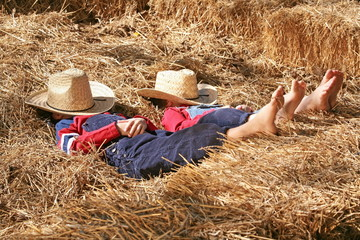 Farmers Asleep in the Hay