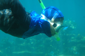 A man snorkeling underwater close-up.