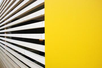 padrão amarelo