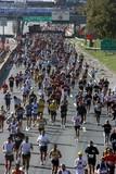 Fototapety the n.y.c marathon