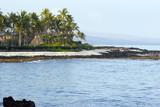 Hawaiian Volcanic Beach poster