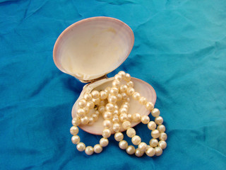 Pearl necklace and a shell
