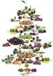 olive di natale