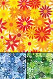 Seamless repeating flower background with three color variations poster