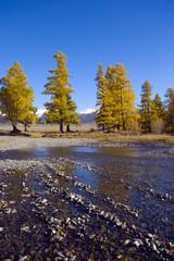 Aktru river over Kuraiskaya steppe