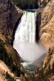 Grand Canyon of Yellowstone national park poster