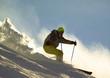 skier in a snow povder