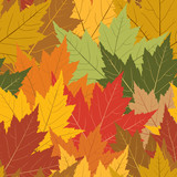 Fall maple leaf seamless repeating background poster