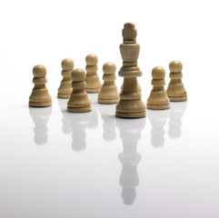 chess pawns and king/ standing out of the crowd