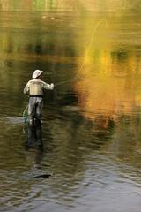 fly fishing recreation