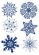 snowflakes set three (vector)