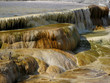 Northern Plains Wyoming Yellowstone Mammoth Hot Springs