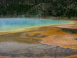 Northern Plains Wyoming Yellowstone Grand Prismatic Spring