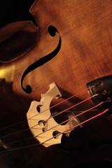 contrebasse instrument