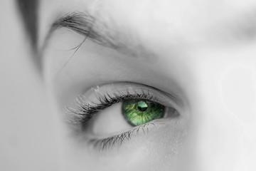 oeil vert regard de femme nature écologie développement durable