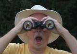 Birdwatcher Looking Through Binoculars poster
