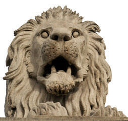 Stone lion from The Chain Bridge. Budapest, Hungary.