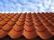 Traditional, danish roofing with red tiles