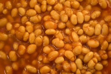 Beans Close up