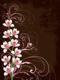 white orchids with pink swirls and grunge frame