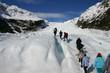 Hiking - Fox Glacier New Zealand