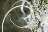 Razor Wire and Chain Link poster