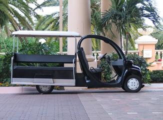 Minicar for garden trip