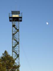 torre forestal